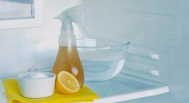 karbonat ile buzdolabı temizliği
